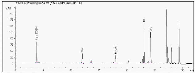 醋酸奥曲肽中氨基酸组成分析色谱图:  色谱柱:Venusil AA氨基酸分析专用柱,4.6250mm,5m,100,(订货号:AA952505-0); 流动相A:0.1mol/L CH3COONa (用冰醋酸调pH 6.5):乙腈=93:7;流动相B:80%乙腈; 流 速:1mL/min; 柱 温:40; 进样量:2L; 波 长:254nm。 梯度: